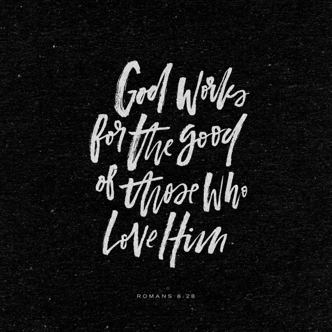 www.bible.com