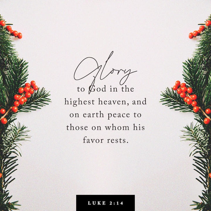 Luke 2:13-14 And suddenly there was with the angel a multitude of the heavenly host praising God, and saying, Glory to God in the highest, and on earth peace, good will toward men. | King James Version (KJV) | Download The Bible App Now