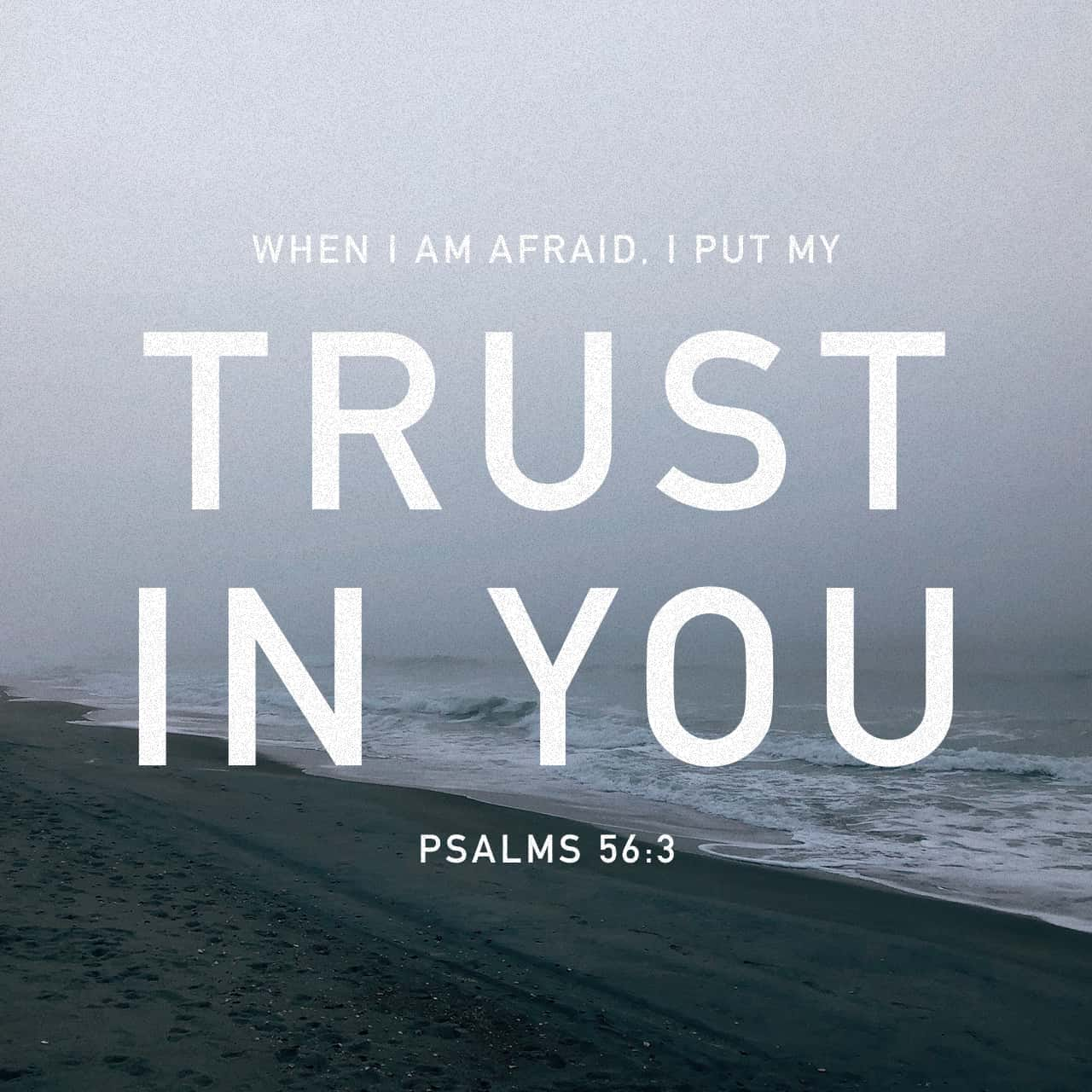Psalms 56:3-4 When I am afraid, I put my trust in you. In God ...