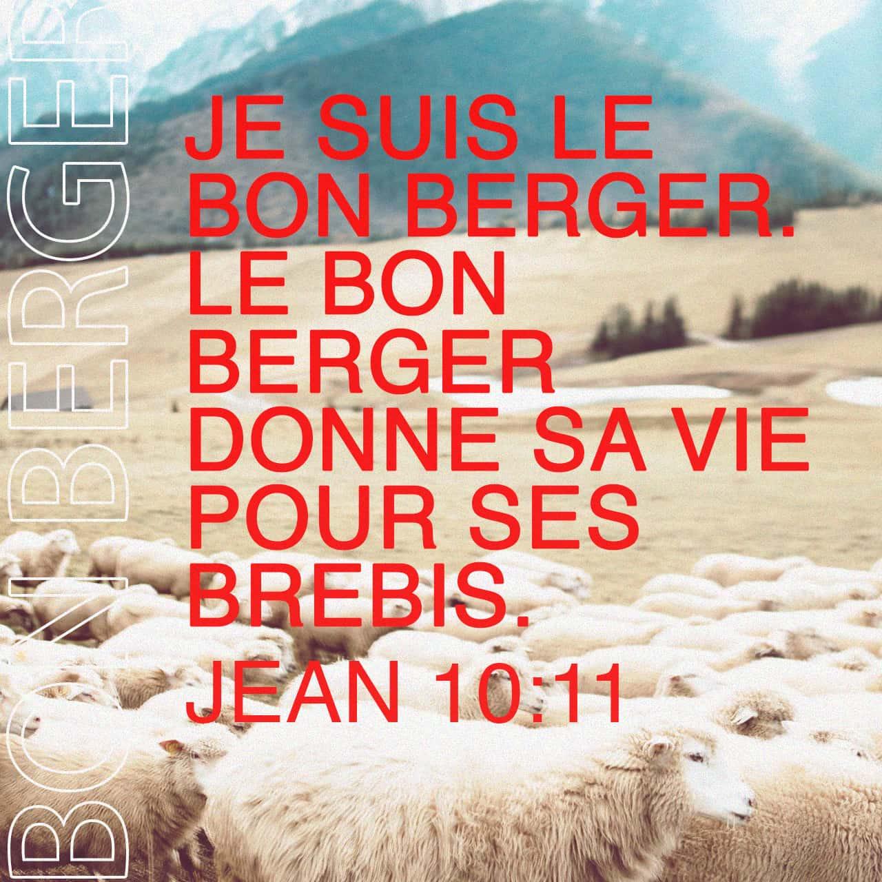 Verset Biblique du jour - jour 112 - image 51381 (Jean 10:11-18)