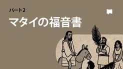 マタイの福音書14-28章【概観】