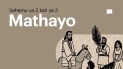 Muhtasari: Mathayo 14-28