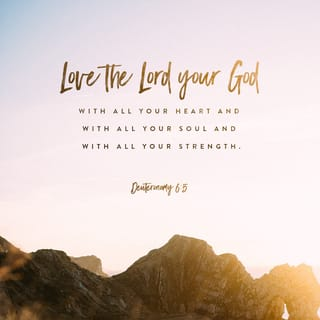 Deuteronomy 6:5 And you must love the LORD your God with all your heart,  all your soul, and all your strength. | New Living Translation (NLT) |  Download The Bible App Now