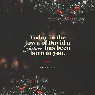 Luke 2 11 Today Your Savior Was Born In The Town Of David He Is Christ The Lord For There Is Born To You This Day In The City Of David A Saviour Sing we all of the savior mild. luke 2 11 today your savior was born in