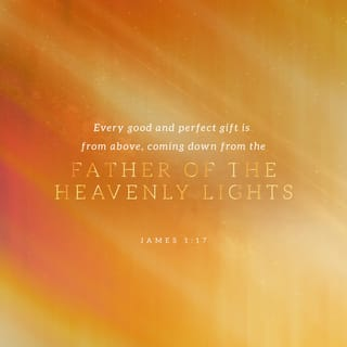 James 1:17 Every good gift and every perfect gift is from above, and comes  down from the Father of lights, with whom there is no variation or shadow  of turning. | New