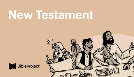BibleProject: Read Scripture - New Testament