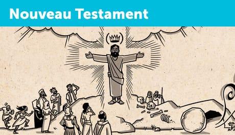 BibleProject: Vue d'ensemble des livres: Nouveau Testament