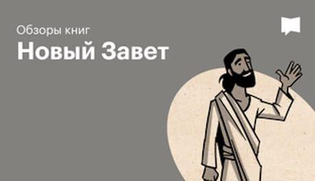 BibleProject: Обзоры книг: Новый Завет