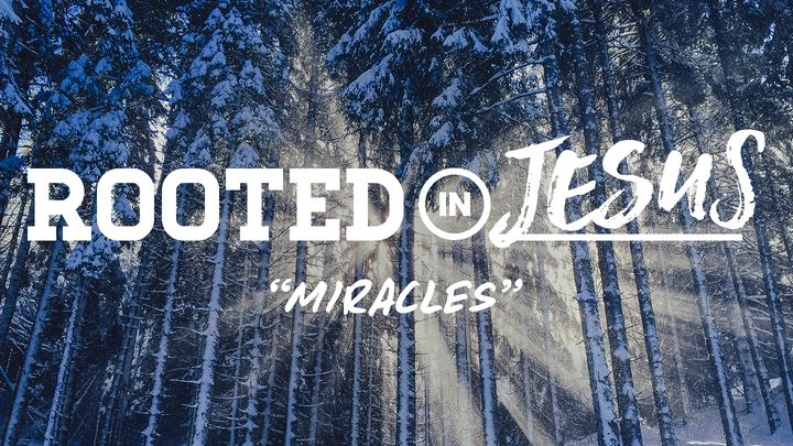 Rooted In Jesus: Miracles