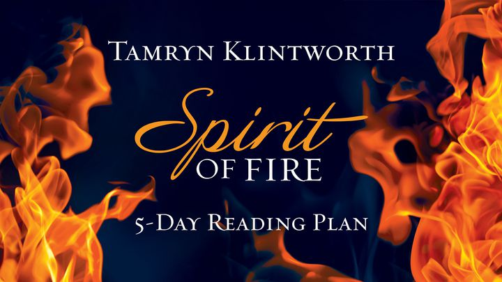 Spirit Of Fire By Tamryn Klintworth