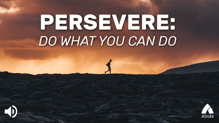 Persevere: Do What You Can Do