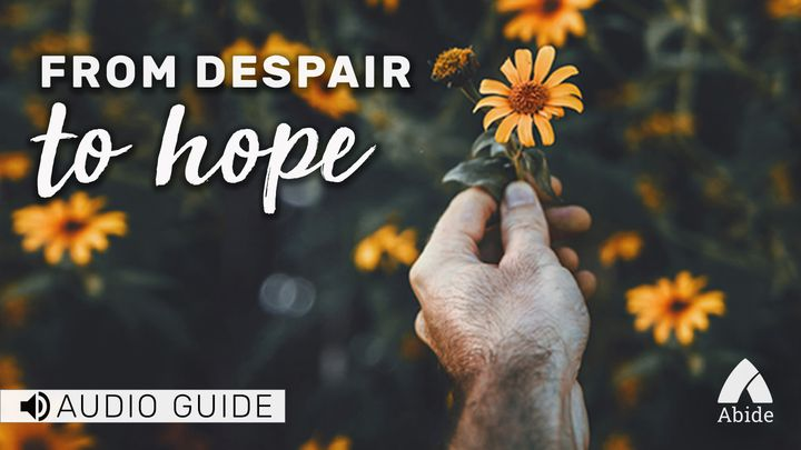 Despair To Hope