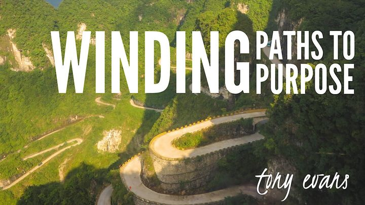 Winding Paths To Purpose