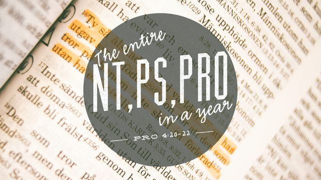 NT, PS, PRO In One Year