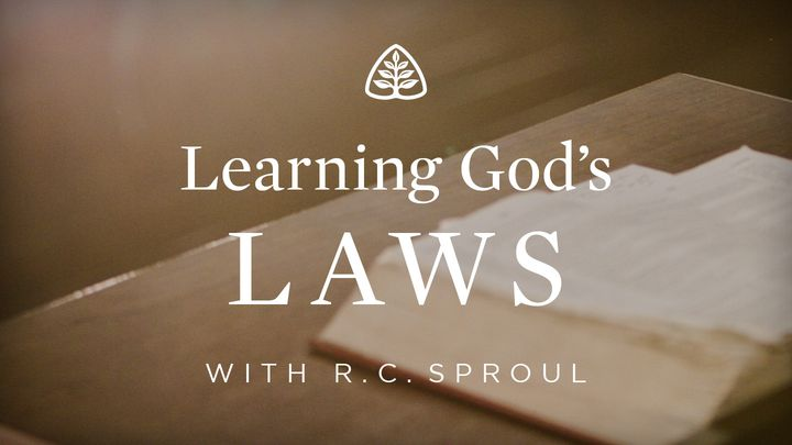 Learning God's Laws