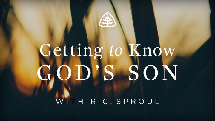 Getting to Know God's Son
