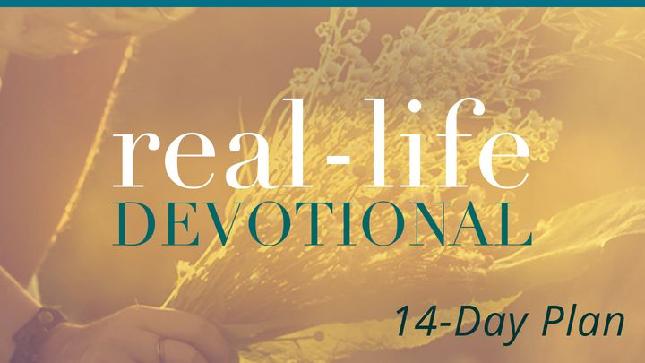 Real-Life Devotions by Lysa TerKeurst