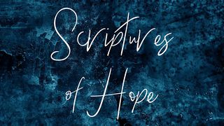 Romans 15:4 Such things were written in the Scriptures long ago to teach  us. And the Scriptures give us hope and encouragement as we wait patiently  for God's promises to be fulfilled. |