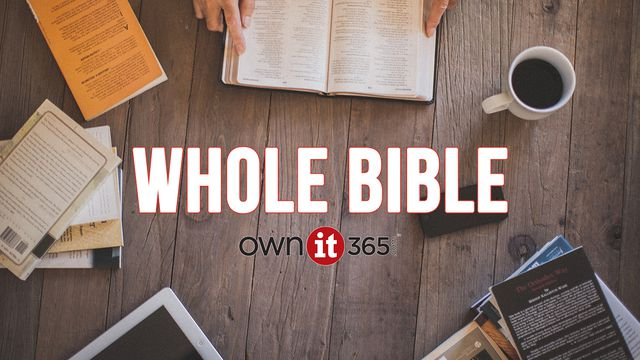 OWNit365 Whole Bible Plan