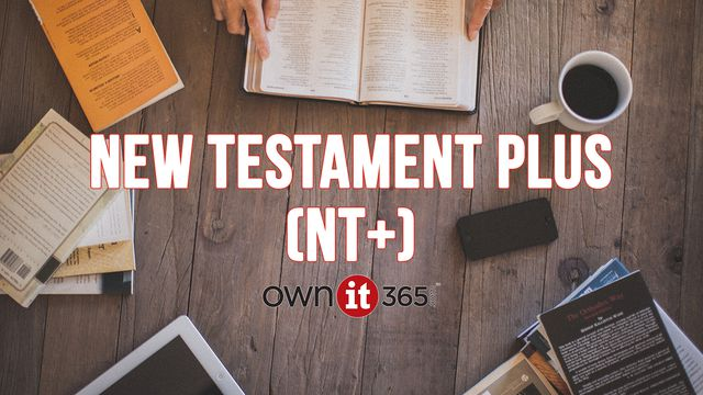 OWNit365 New Testament (NT)+ Plan
