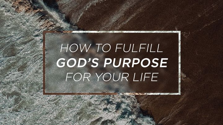 How To Fulfill God's Purpose For Your Life