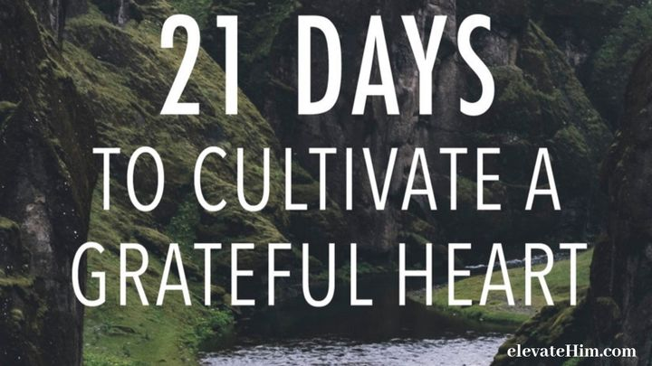 21 Days To Cultivate A Grateful Heart