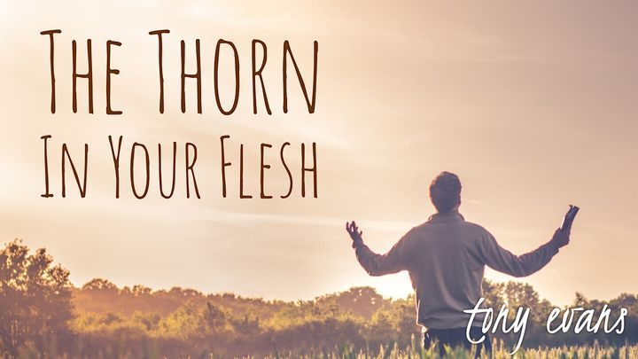 The Thorn In Your Flesh