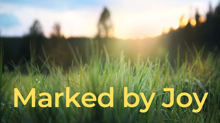 Marked By Joy