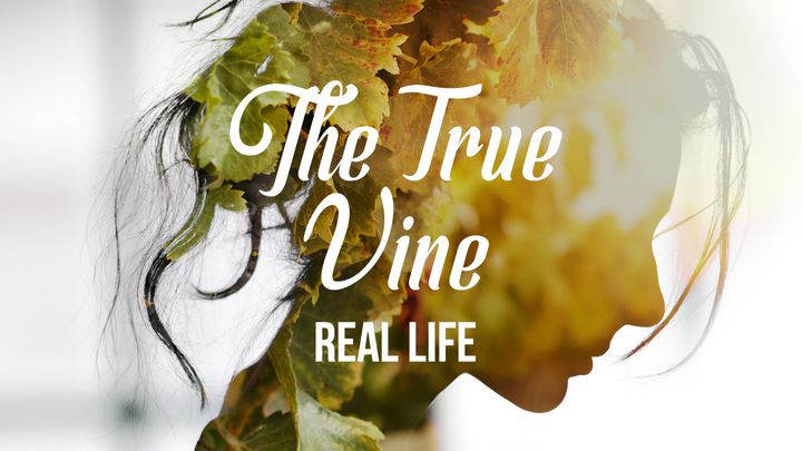 [Real Life] The True Vine