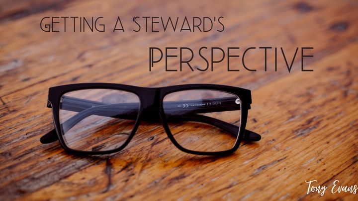 Getting a Steward's Perspective