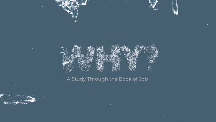 Why?: A Study Through Job