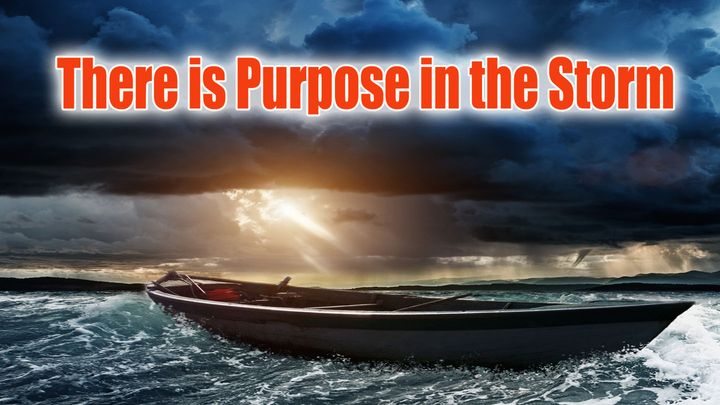 There Is Purpose in the Storm