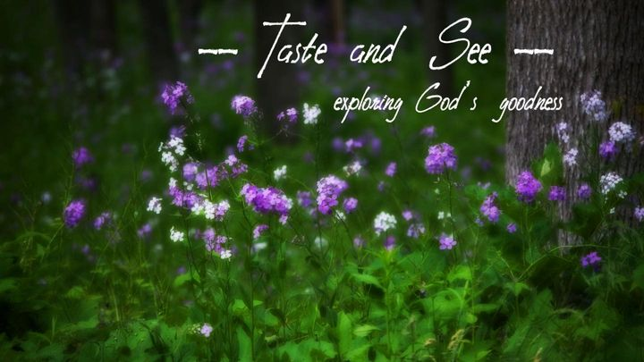 Taste and See: Exploring God's Goodness