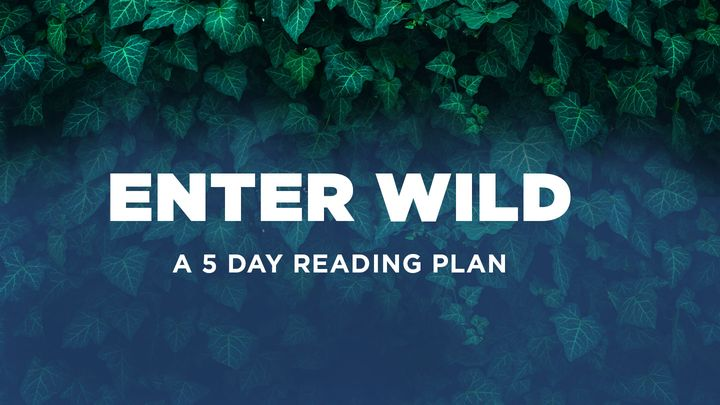 Enter Wild: A 5-Day Devotional by Carlos Whittaker