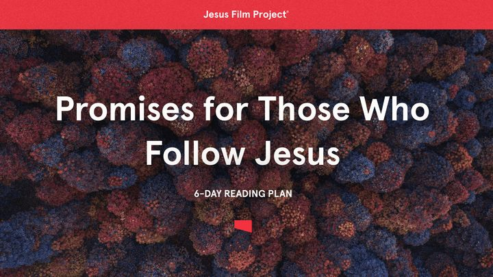 Promises For Those Who Follow Jesus