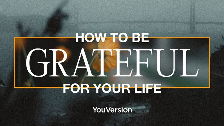 How to Be Grateful for Your Life