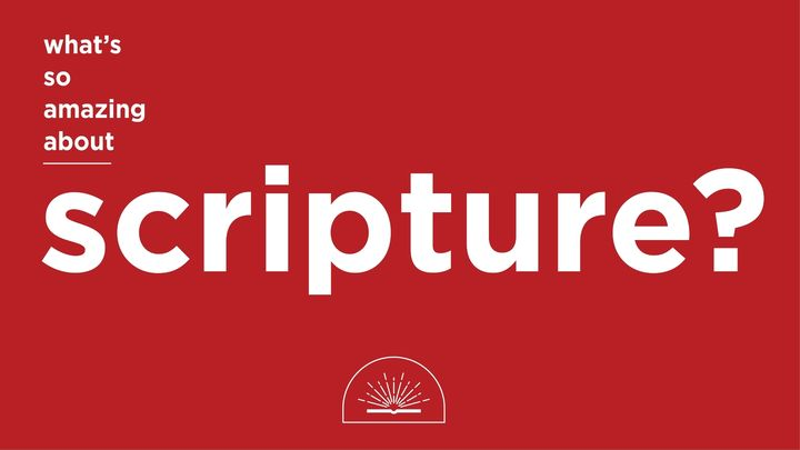 What's So Amazing About Scripture?