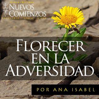 Florecer en La Adversidad
