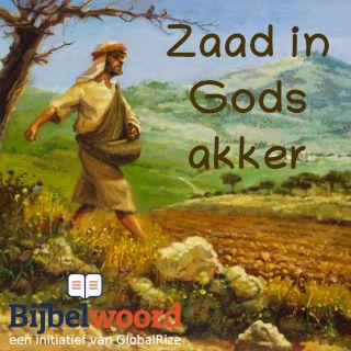 Zaad in Gods akker