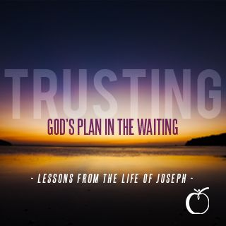 Trusting God's Plan in the Waiting