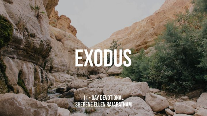 Through Exodus