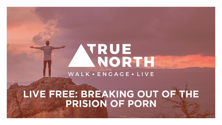 True North: Breaking Out Of The Prison Of Porn